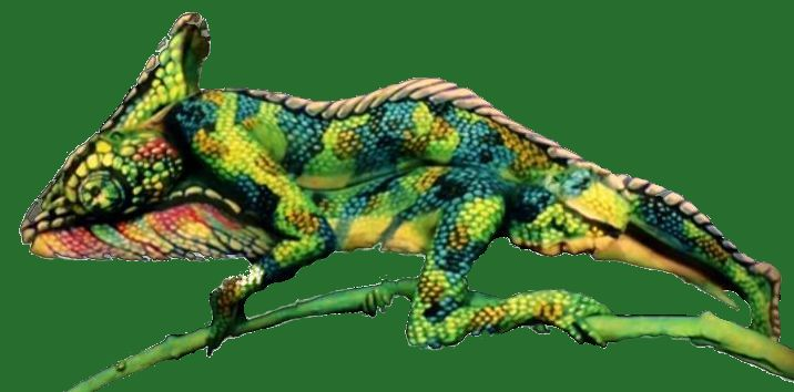 Chameleon - impressive creation - Fine Art Bodypainting  .. Copyright by Johannes Stötter1